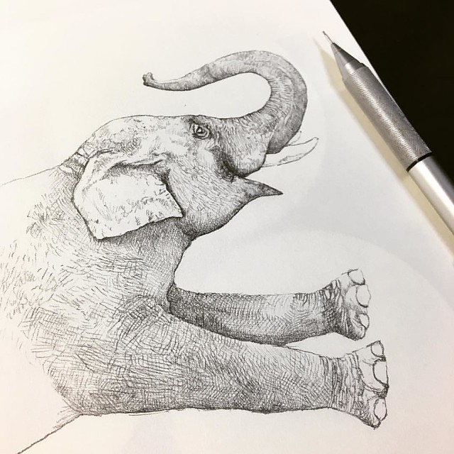 Sketching for @betones_japan new design.  新作に向けてラフスケッチ中  #artwork #illustrate #elephant #design #inkdrawing #sketching #sketch #DoodleArts #DoodleArtEnthusiasts #lesstalkmoreillustration #fanboysyndicate #inkfeature #pencilart #pencildrawing #pencil #鉛筆画