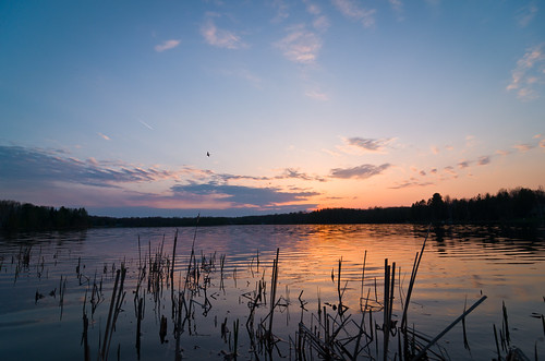 sunset sky cloud lake reflection water night landscape evening spring tokina1224 reflect cattails
