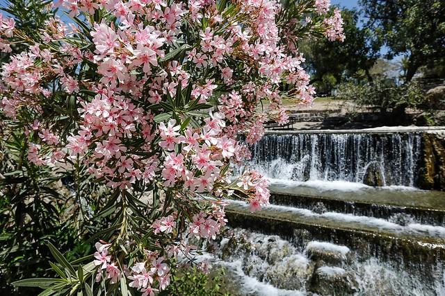 Sahne, Gan HaShlosha: Un Oasis entre los 20 lugares mas bellos del Mundo