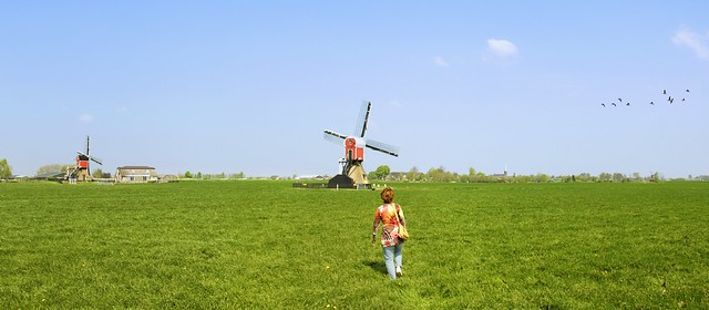 The green meadow leads Kanitha to the historic Rijnland mills