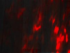 vlcsnap-2014-05-23-12h08m13s3