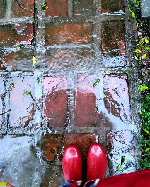 Lista para disfrutar de la lluvia con mi kit impermeable. Botas, piloto y paraguas  - . . . . . . . . . #magnumphotos #thephotosociety #lensculture #photography #streetphotography #documentary #documentaryphotography #photojournalist  #livefolk #liveauthe