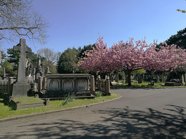 Royal Borough of Kensington and Chelsea Cemetery, Hanwell