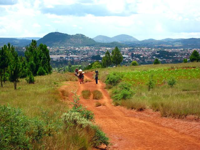 Madagascar1 - 59