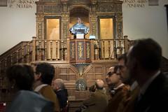 El profesor Castillo durante la conferencia