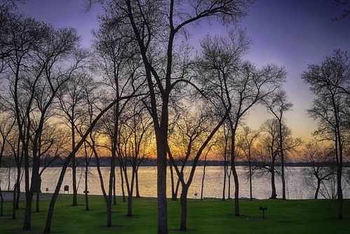 park trees sunset sky lake alexandria