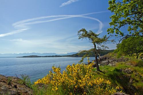 Devonian Regional Park - Metchosin, Vancouver Island, BC