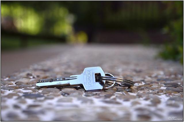 142/365 Ya he encontrado la llave/ I have already found the key