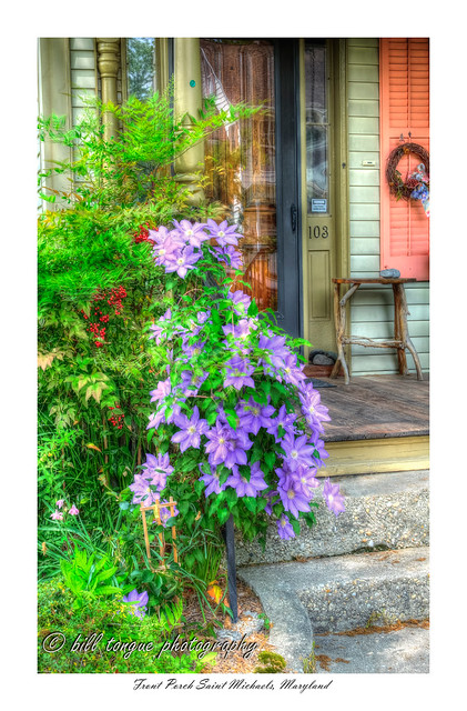 St-Mike's-clematis-flickr