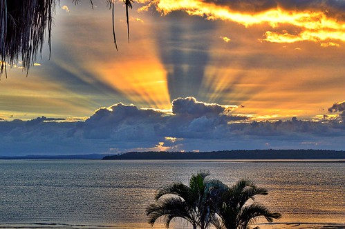 morning trees sky sun water clouds palmtree sunrays herveybay nikond3200 cloudsstormssunsetssunrises