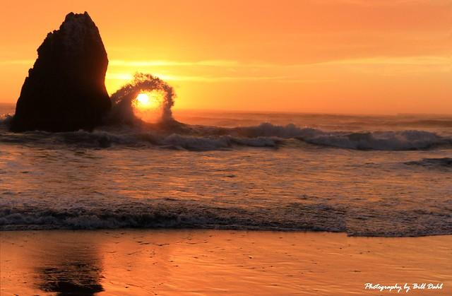 Oregon - OH MY