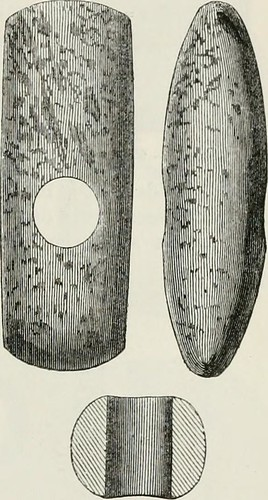 "Image from page 216 of ""The ancient stone implements, weapons, and ornaments, of Great Britain"" (1872) 