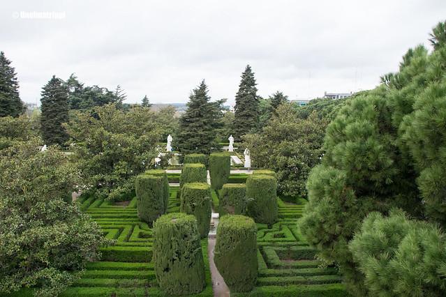 Sabatinin puutarhan graafisesti leikattuja kasveja