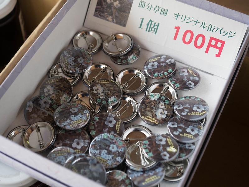 20170312-四阿屋山-0072.jpg