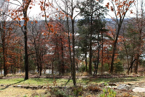 garimelchers belmont falmouth virginia garden estate winter rappahannockriver