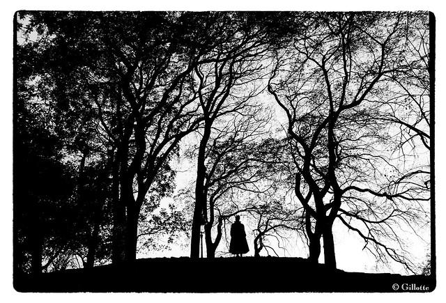 Contemplation aux Buttes-Chaumont