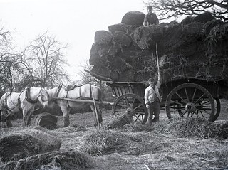 H00526 Hay wagon c.1890   by East Sussex Libraries Historical Photos