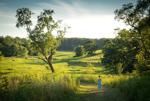 summer green girl garden evening child pennsylvania walk meadow pa longwoodgardens longwood goldenhour chestercounty kennettsquare jennifermacneill jennifermacneillphotography