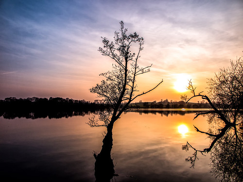 ianwright 2017 finwrightphotographycouk ian fin wright croes mere croesmere lake ellesmere cockshutt tree sunsunset shropshire sky reflection water