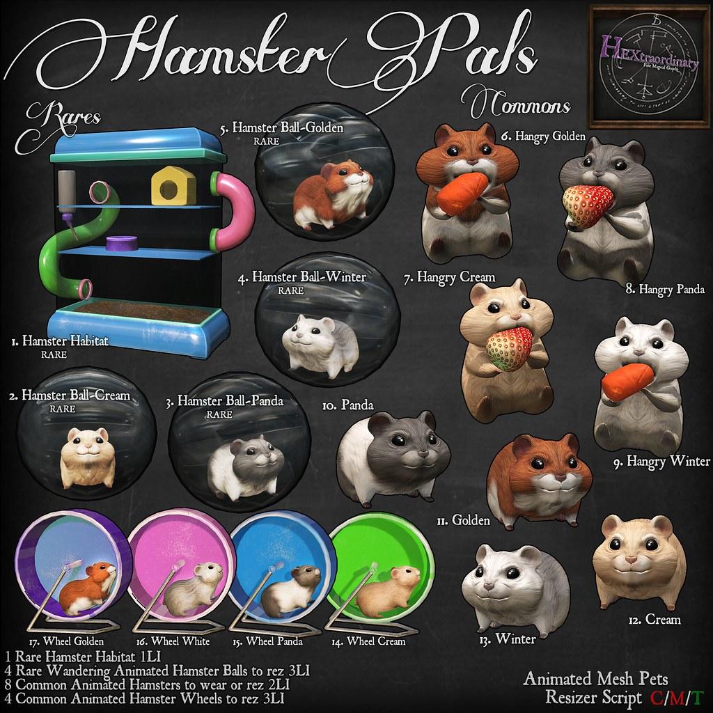 Hamster Pals