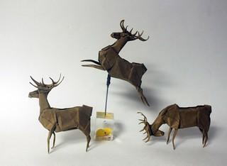 deer | by paper folding artist redpaper
