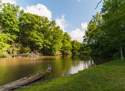 summer lake landscape virginia unitedstates marion dailyphoto dcr hungrymotherstatepark d5000 smythcounty marionvirginia hungrymother smythcountyvirginia hungrymotherlake pauldiming virginiadepartmentofconservationrecreation hungrymothercreek