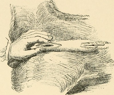 """Image from page 232 of """"Diseases of the dog and their treatment"""" (1911)"""