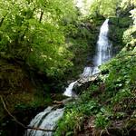 Braña La Puerca - Salimeira del Xiblu - Cuevagüerta (Teberga) (11-05-2014)