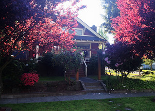 Adorable Beacon Hill Craftsman Bungalow:  Front/16th Ave. South Elevation