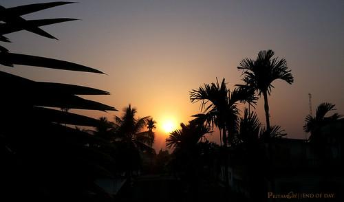 sunset landscape dayend
