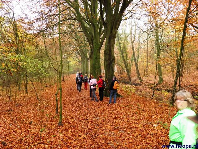 17-11-2012 Wassenaar 25.8 Km (92)