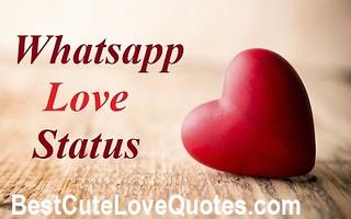 Best Whatsapp Status Love Status And Updates Love Quotes