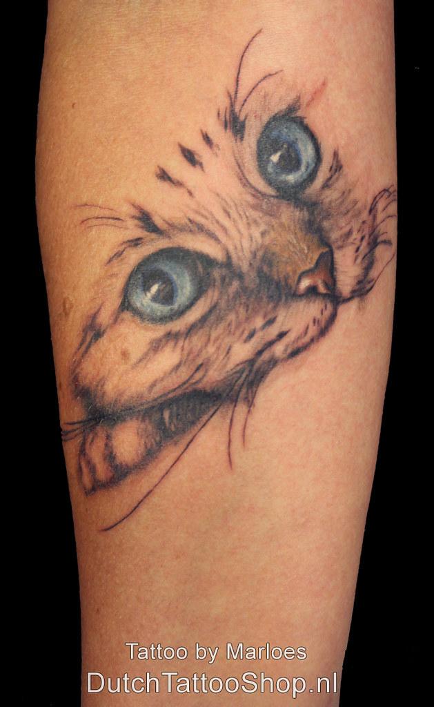 Kat Cat Ogen Portret Tattoo Dutch Tattoo Shop Marloes Flickr