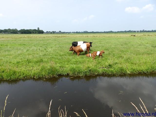 06-07-2013 Utrecht 37.5 Km (63)