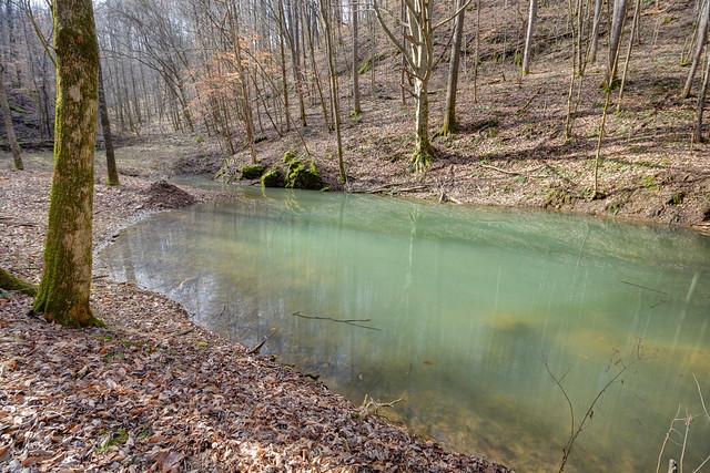 Karst spring, Jackson County, Tennessee