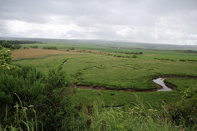 Marshes by Castle Stuart