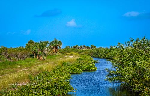 landscape bluesky bluewater water canal trail road dirtroad merritisland wildliferefuge merrittislandnationalwildliferefuge titusville florida usa nature mothernature outdoors outside