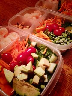 Lunchbox Adventures- shrimp salad
