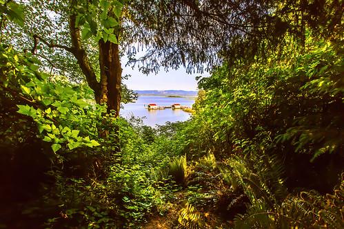 view explore trail capedisappointmentstatepark portofilwaco