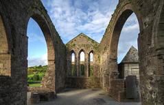 Baltinglass Abbey #4