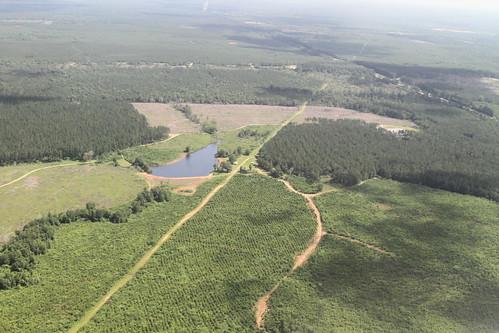 pond louisiana northshore wetlands frack southwings