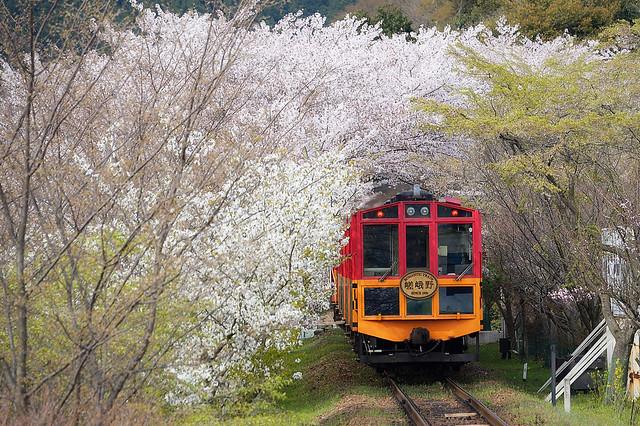 The Sagano Romantic Train