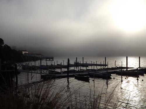 Fog on the Hopkins River Warrnambool   by jinnyfawcett