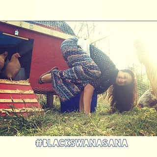 this week's blackswanasana is crazycrow here i am tryin