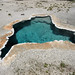 Blue Star Spring (Old Faithful Group, Upper Geyser Basin, Yellowstone Hotspot Volcano, nw Wyoming, USA)