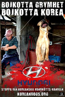BOYCOTT CRUELTY (Swedish) | by Koreandogs