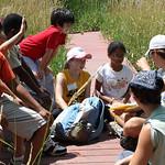 Tue, 07/01/2014 - 10:58am - Aquatic Biology Summer Day Camp