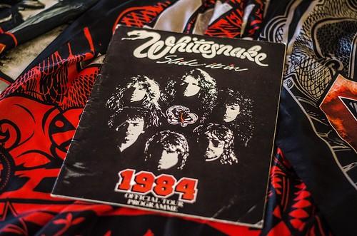 Whitesnake (13)