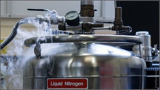 Liquid nitrogen /3 | by FlickrDelusions