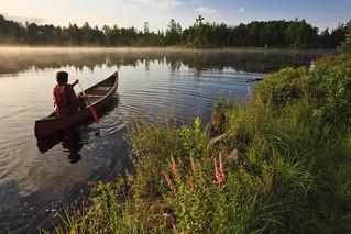 A man canoeing on Little Bear Brook Pond
